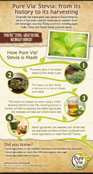 How Stevia is Made Infographic