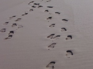 essay on footprints by margaret fishback powers