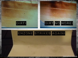 emzone monitor cleaning