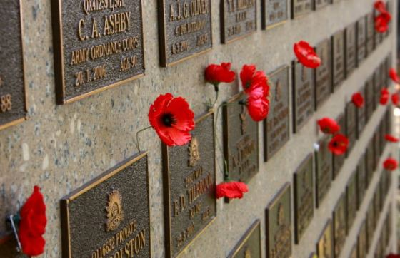 lest we forget, remembrance day